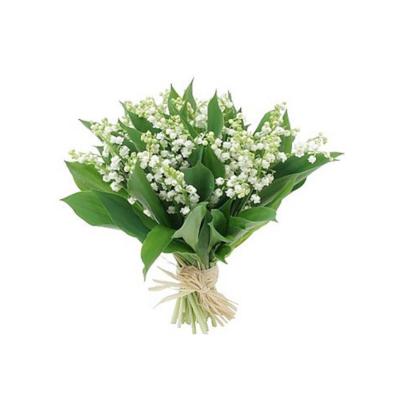 Bouquet de brins de muguet