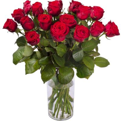 Bouquet de roses rouge HORS SV