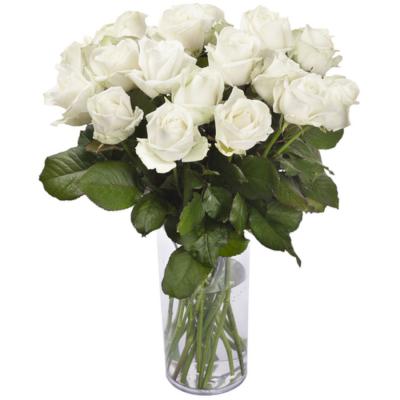 Bouquet de roses blanche...
